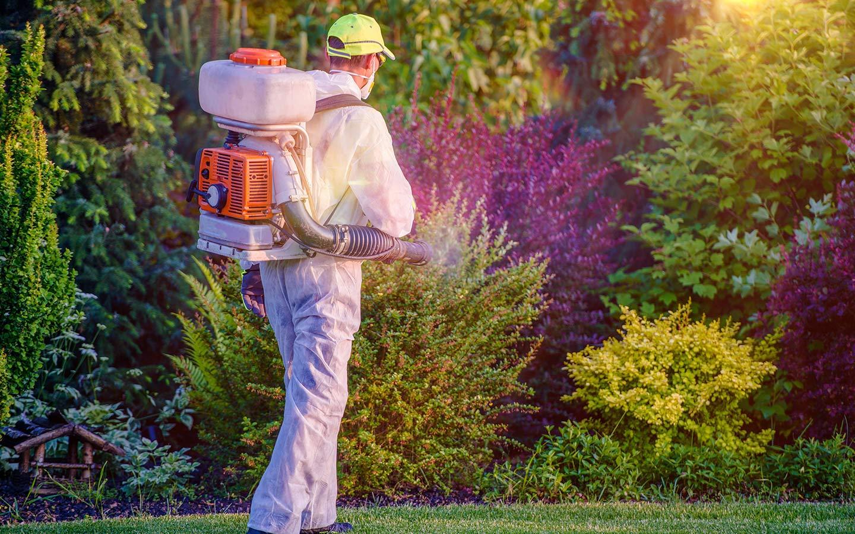 pest control for Dubai villa gardens