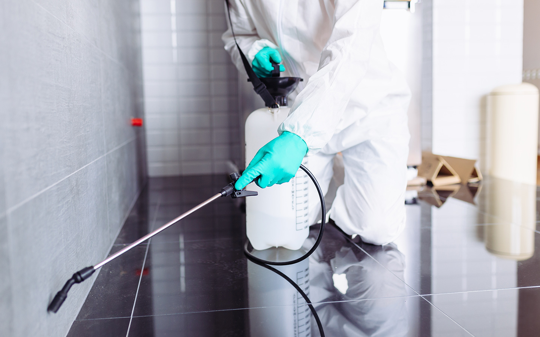 Dubai Municipality approved pest control companies in Dubai