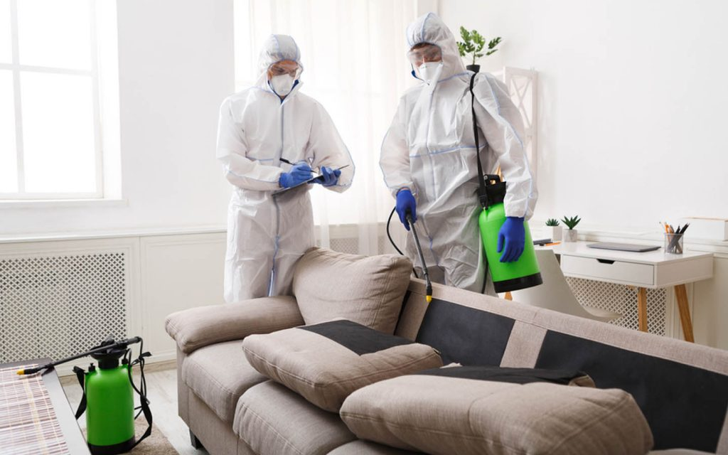 pest control services at home