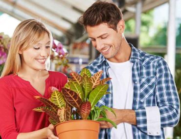 couple buying plants in sharjah