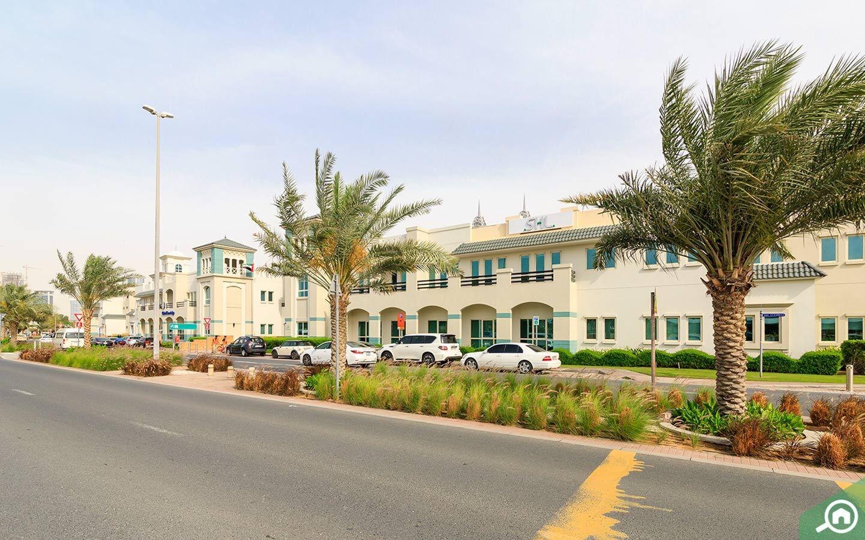 طريق داخل حديقة المعرفة في دبي