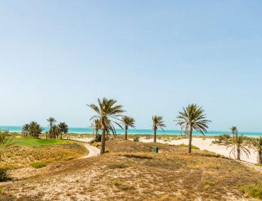 جزيرة السعديات ابوظبي