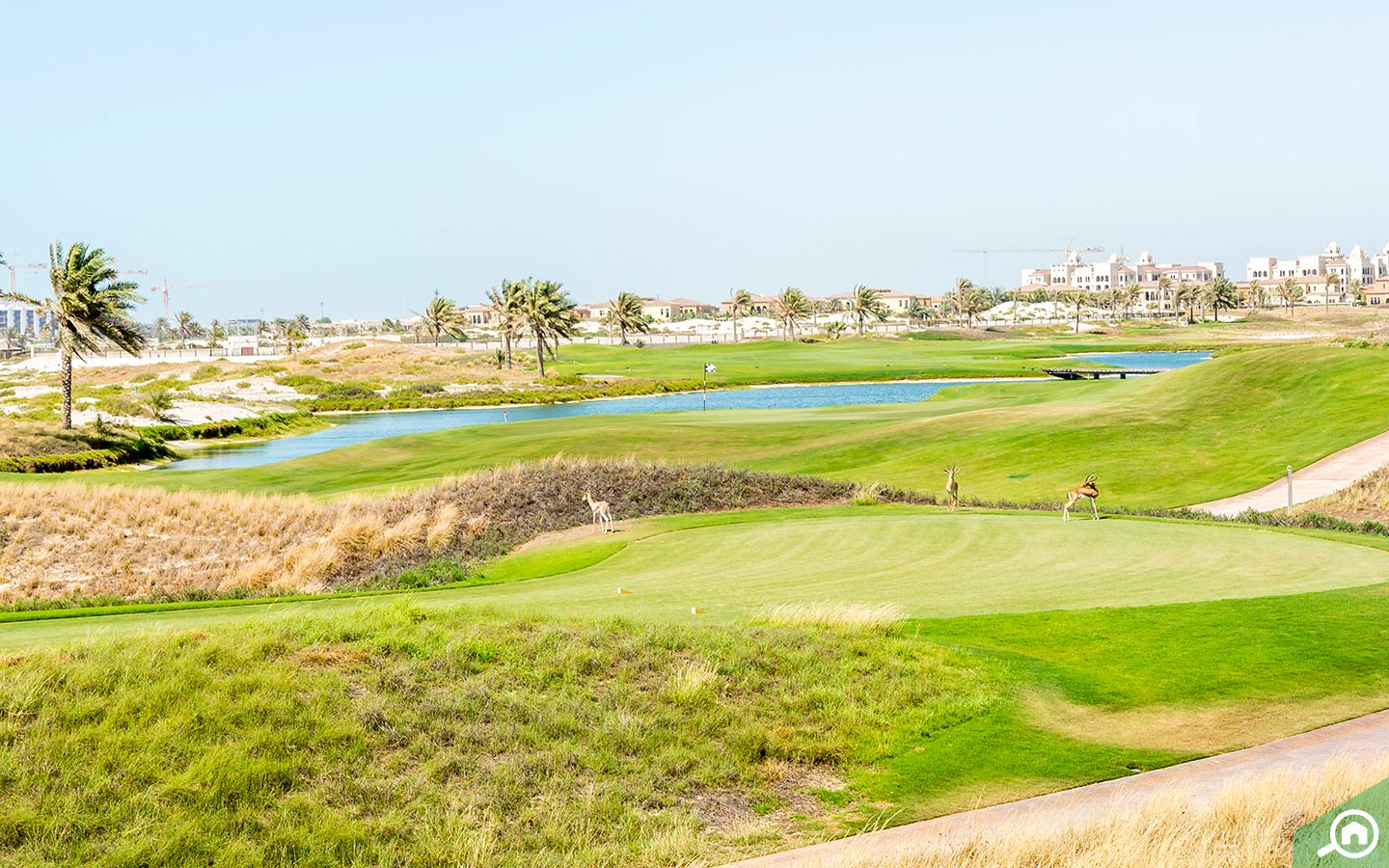 living on saadiyat island gives you easy access to the golf club