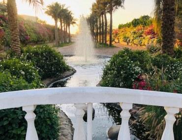 A view of Sharjah Desert Park