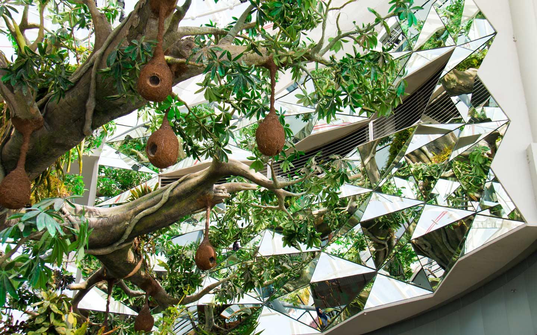 The green planet offer purposeful indoor activities in Dubai