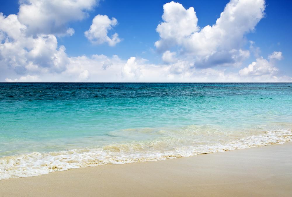 The Stunning Saadiyat Island Was Known for Sand Dunes and Hawksbill Sea Turtles