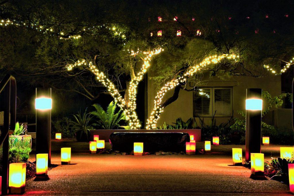 lighting ideas for yards on Bayut.com