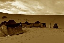 بيوت الإمارات قديماً وأهم ما يميز كلاً منها