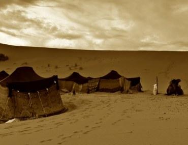 البيوت في الامارات